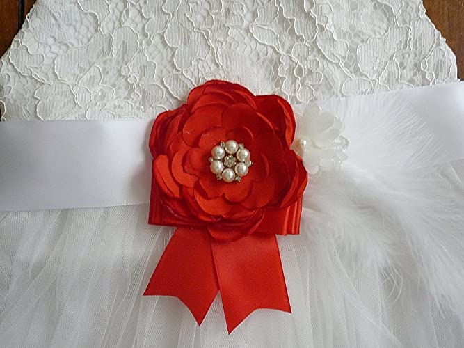 Amazon girls satin ribbon belt usa babys red and white sash girls satin ribbon belt usa babys red and white sash with feathers girls mightylinksfo