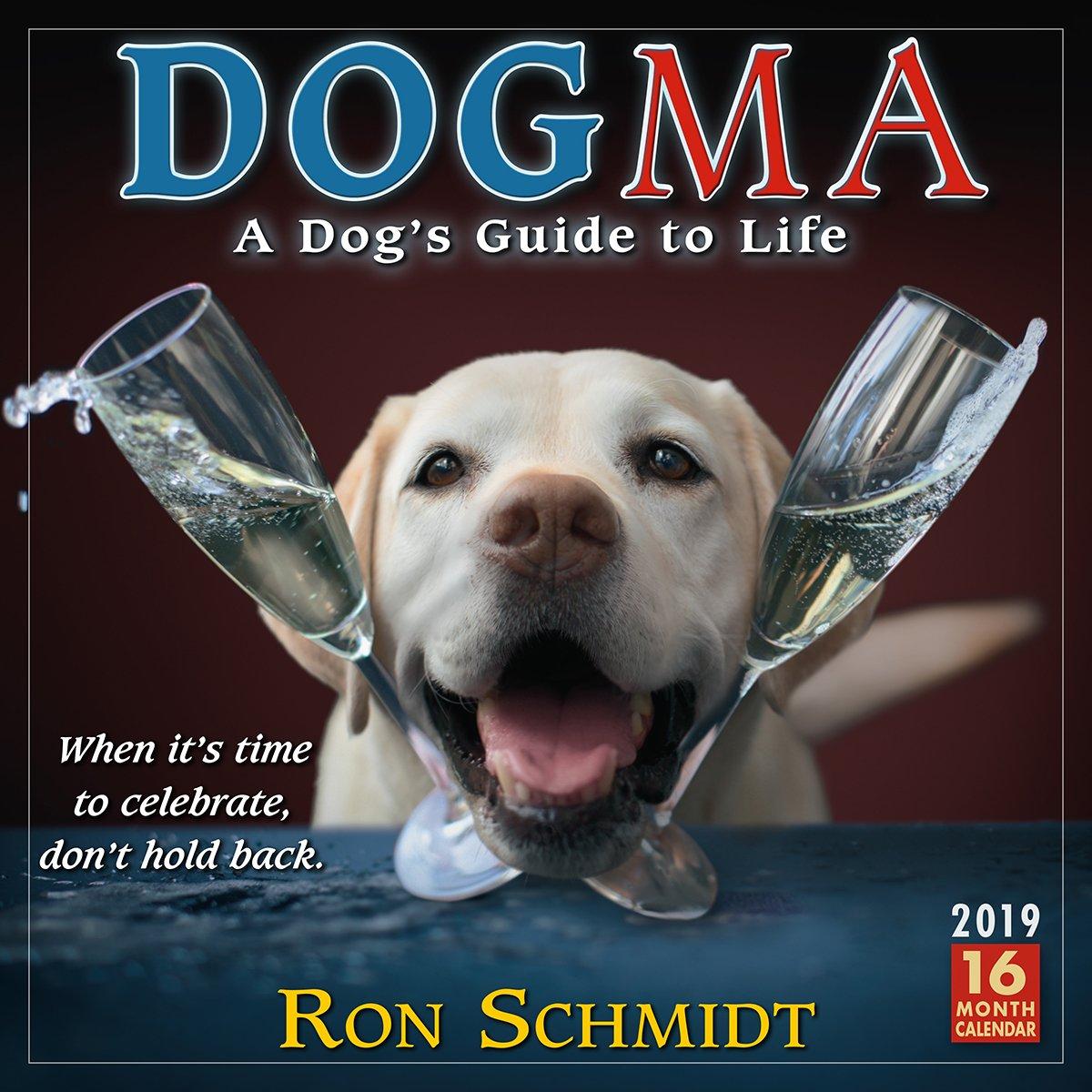 Dogma 2019 Wall Calendar, A Dog's Guide to Life, 12 x 12, (CA-0424)
