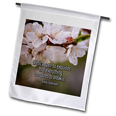 Amazon 3drose Alexis Design Quotes About Life Sakura