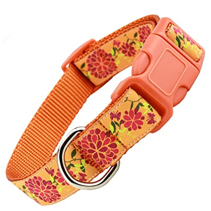 f37000b51051f8 The Artful Canine Orange Summer Blossom Floral Dog Collar with Hot Pink  Flowers