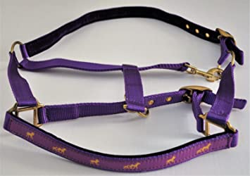 Gold Horse Design cob, black 6 Bright Colours-All Sizes The Ragnar Collection PADDED NYLON WEBBING HEADCOLLAR