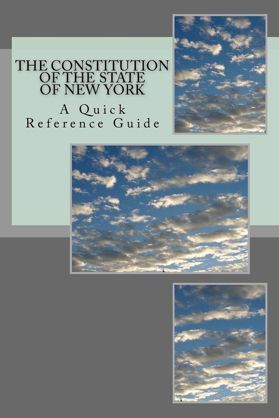 Read Online The Constitution of the State of New York: A Quick Reference Guide pdf