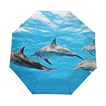 Vipsk Paraguas Plegable del Viaje por mar Delfines Azules ...