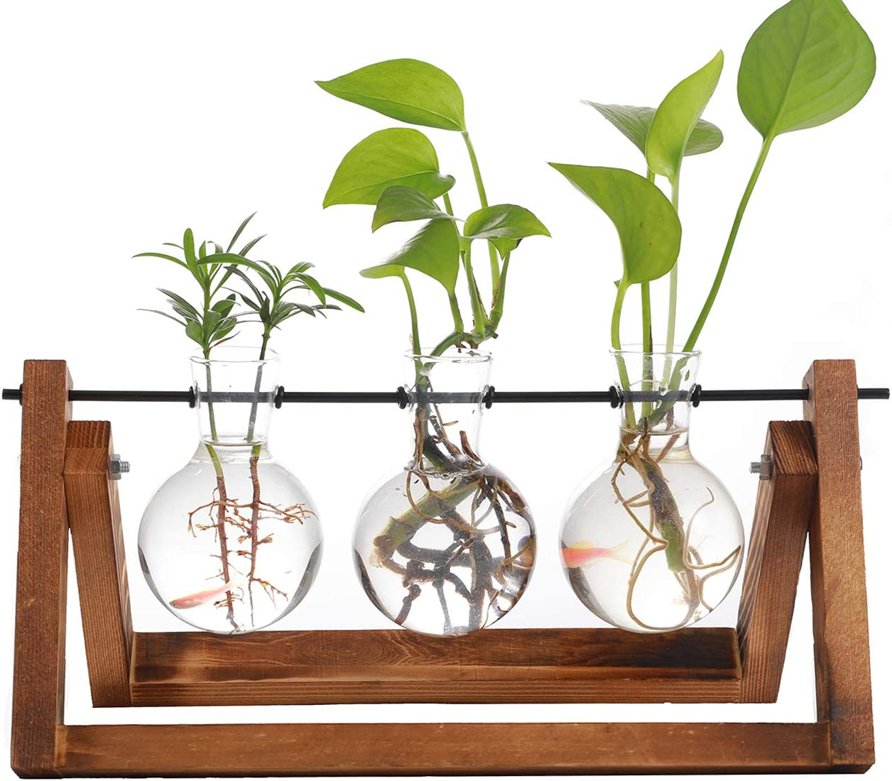 Iwtmm Office Plant Terrarium with Wooden Stand, Desktop Glass Planter Bulb Vase, Solid Air Retro Accessories for Hydroponics Plants Stand Holder Home Garden Wedding Decor (3 Bottle)