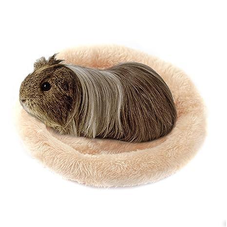 Bwogue - Cama redonda de terciopelo para hámster/erizo/ardilla/ratones/ratas
