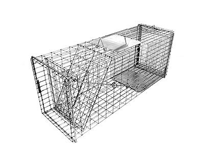 Amazon.com: Tomahawk fixnation Cat trampa: Jardín y Exteriores