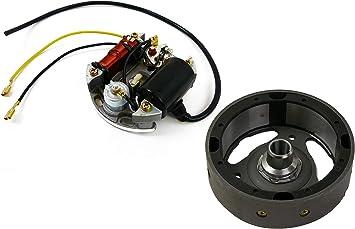 Lichtmaschine Zündapp Zr 10 20 Za 25 40 A 25 Zb 22 Mofa Moped Zündung 6v 17 Watt Lichtmaschine Auto
