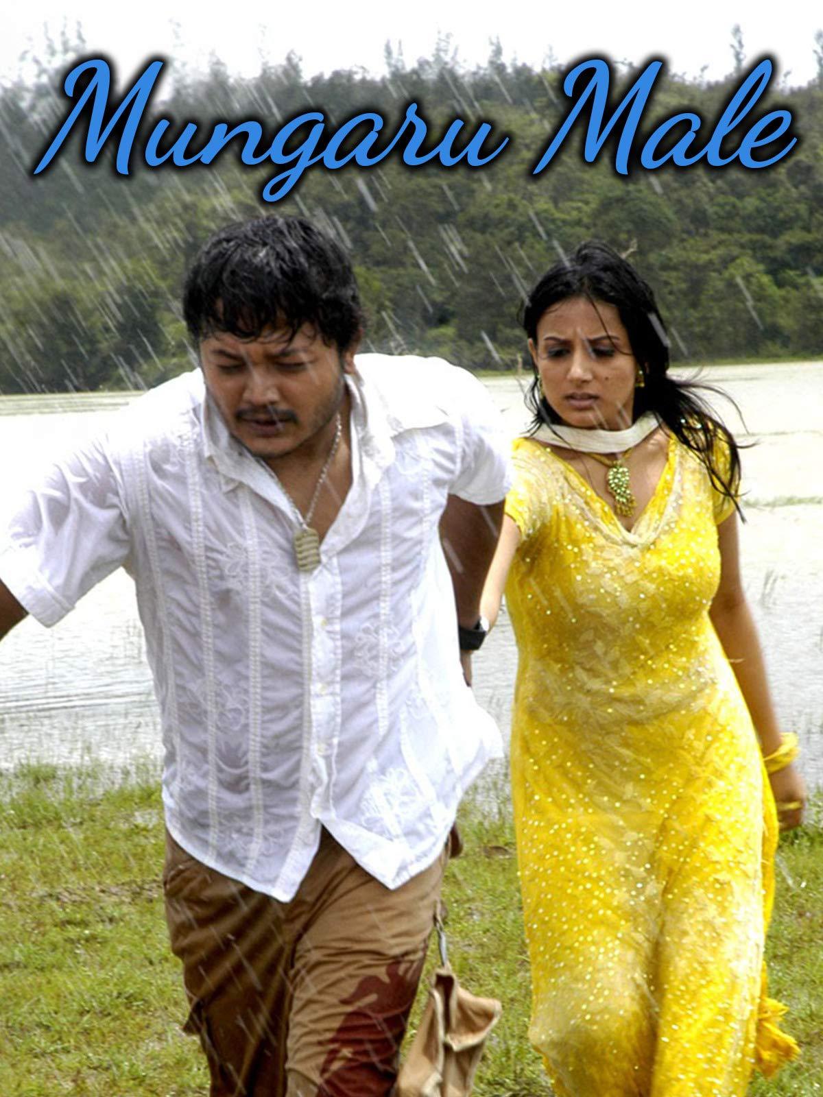 new mungaru male