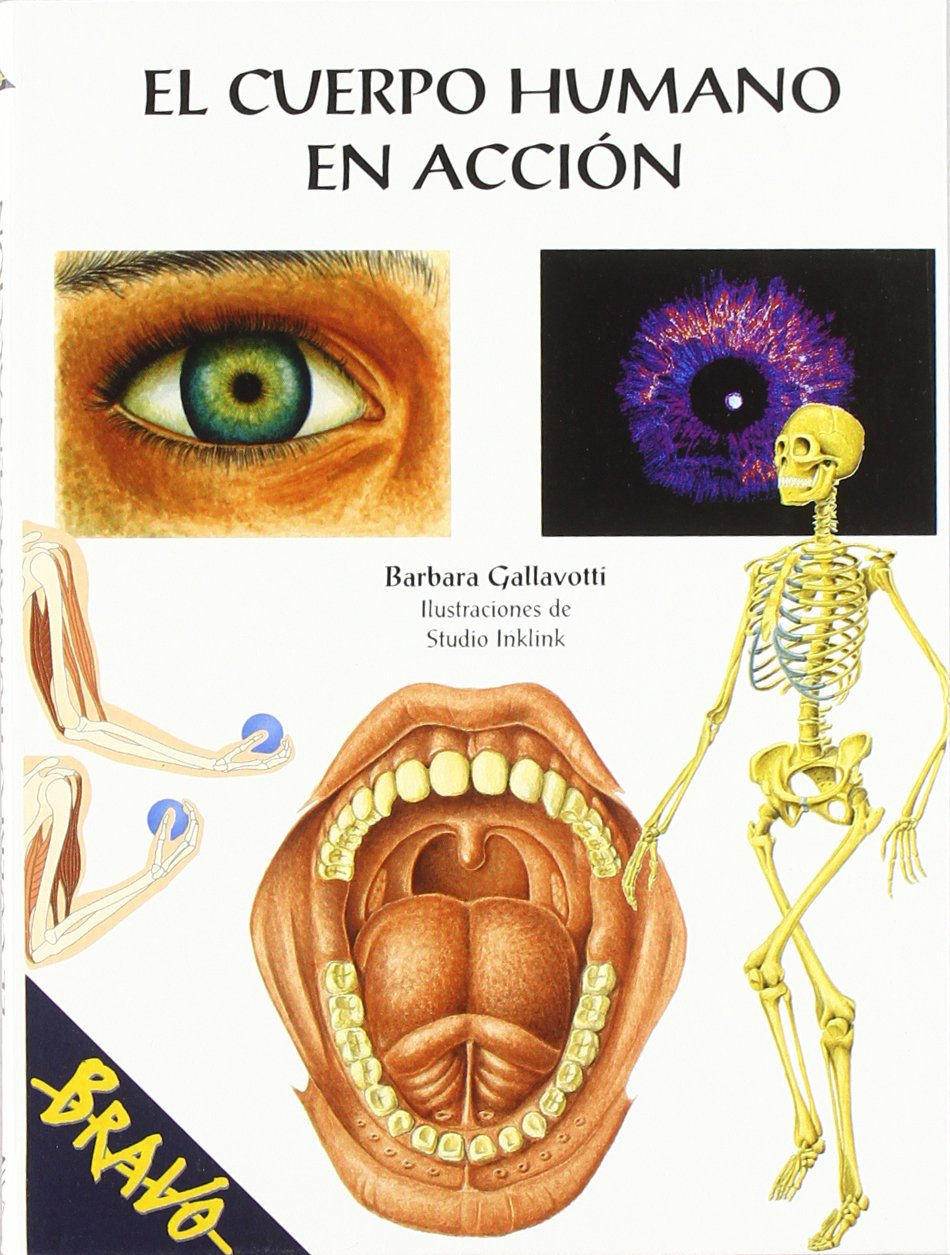 El Cuerpo Humano En Accion The Human Body In Action Spanish