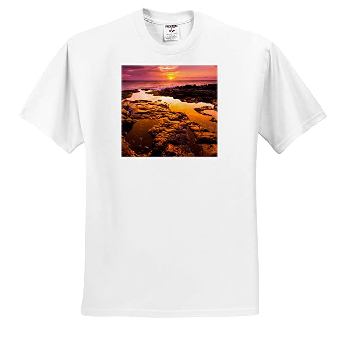 Amazon 3drose Danita Delimont Sunsets Orange Sunset And
