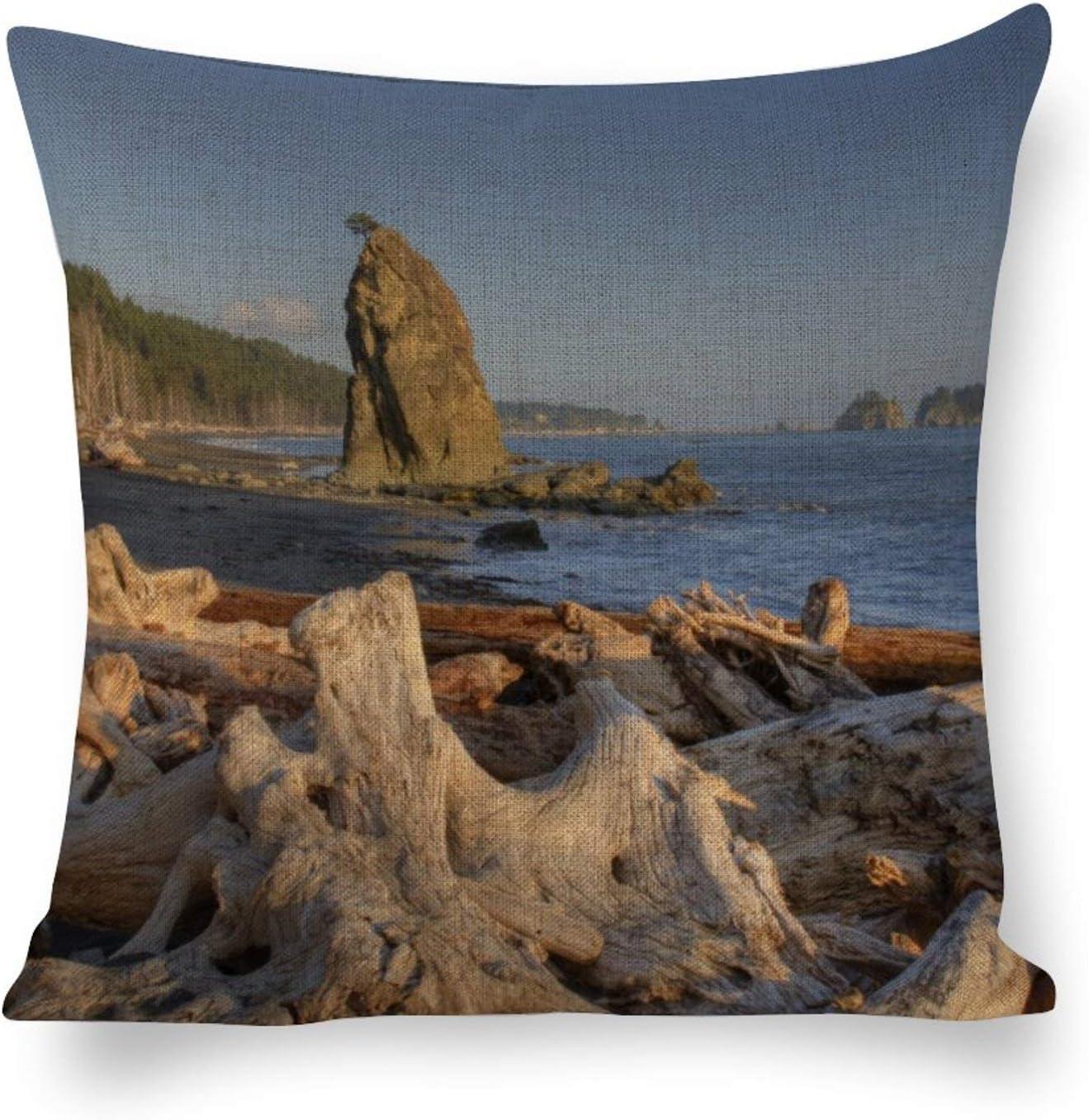 Tamengi USA Washington Olympic National Park Rialto Canvas Throw Pillow Covers Cases 16''×16'', for Home Sofa Car Outdoor Decor Cushion Cover, Square Pillowcase Housewarming Gift