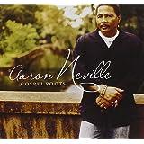 Gospel Roots [2 CD]