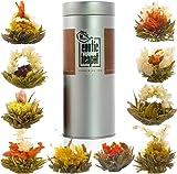 Flowering Tea Sampler Tin - 10 Varieties of Blooming Tea - All Different Flavours - Jasmine Tea - Vacuum Sealed Flower Tea Balls
