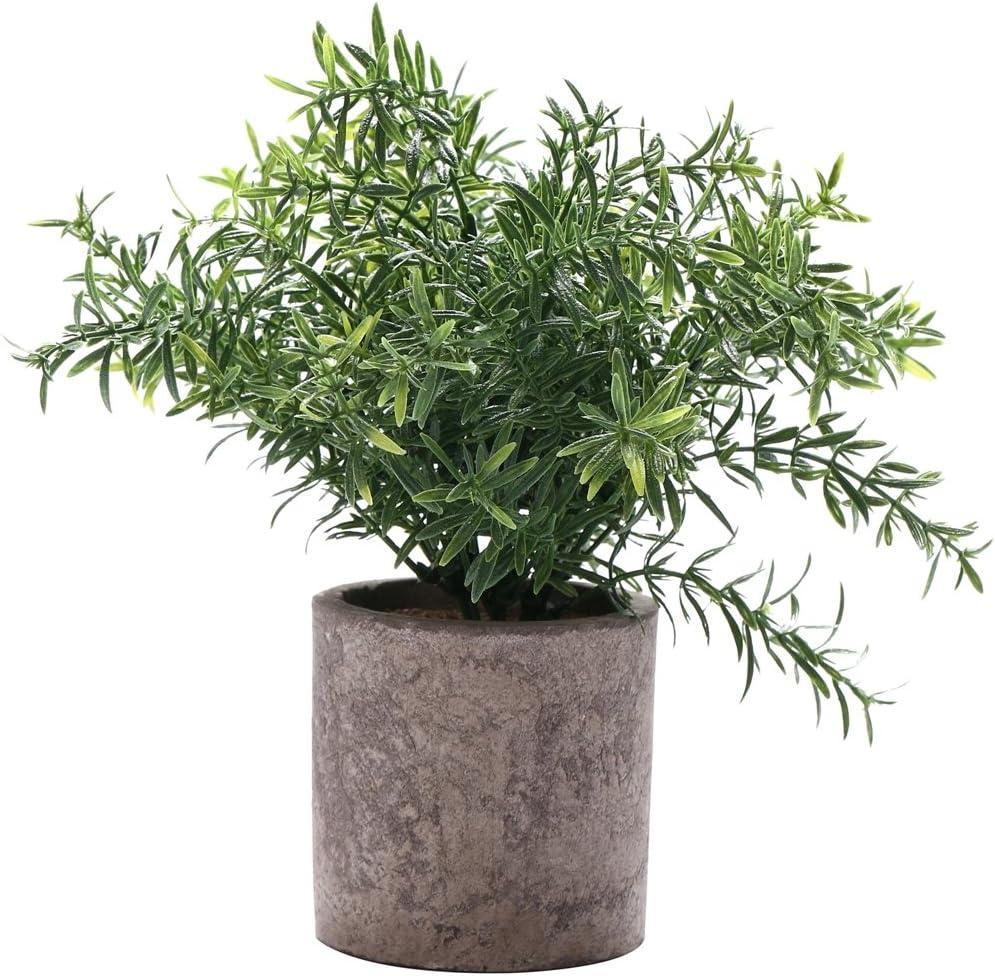 HC STAR Artificial Plant Potted Mini Fake Plant Decorative Lifelike Flower Green Plants - 1101