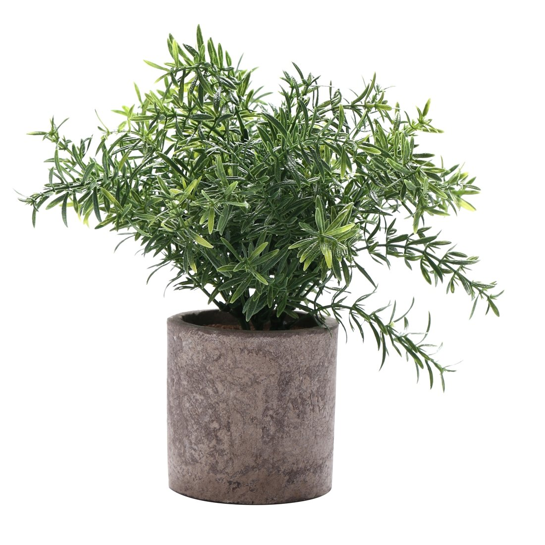 HC STAR Artificial Plant Potted Mini Fake Plant Decorative Lifelike Flower Green Plants - 1101 by HC STAR