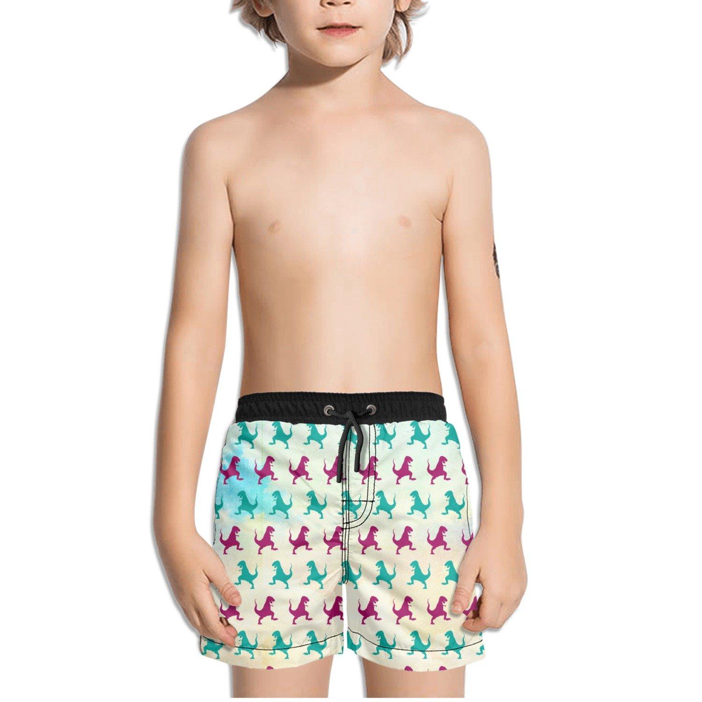 FullBo Dinosaur Tyrannosaurus Silhouette Print Little Boys Short Swim Trunks Quick Dry Beach Shorts