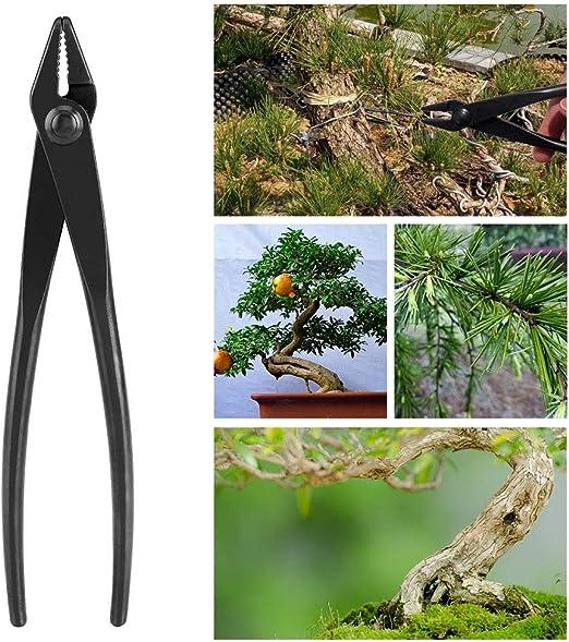 Nikou Alicate para alambres Bonsai - Alicate para alambres Bonsai con aleación de Acero al manganeso con Extremo Redondo para una Herramienta de jardinería de Uso Seguro: Amazon.es: Hogar