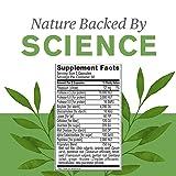 Nature's Sunshine Proactazyme, 100 Capsules, Full