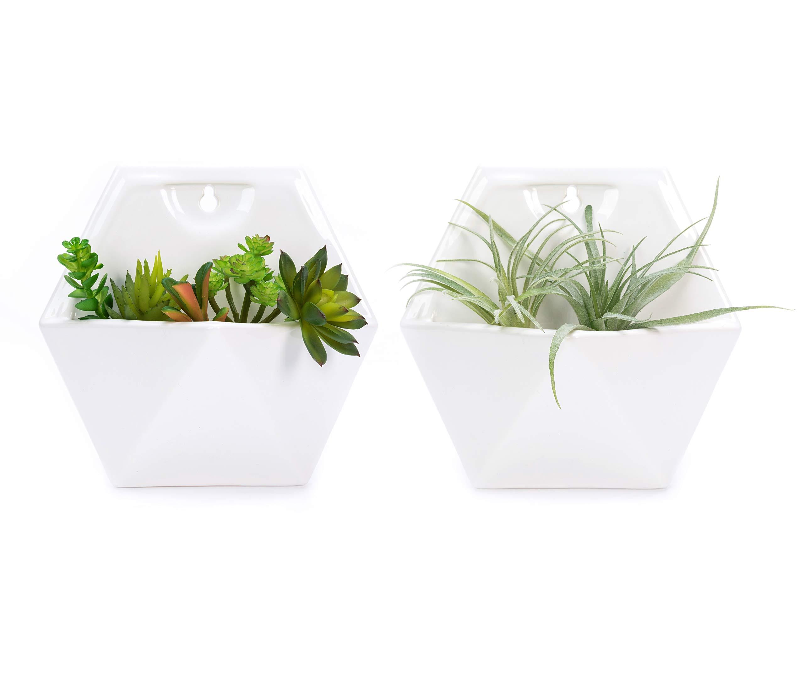 Nattol Wall Succulent Planter, White Ceramic Planters | Geometric Succulent Planters, Set of 2 (White)
