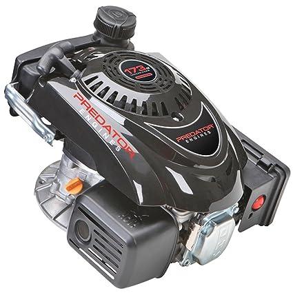 predator 5 5 hp 173cc ohv vertical shaft gas engine certified for rh amazon com Honda Engine Parts Diagram Ford Engine Diagram