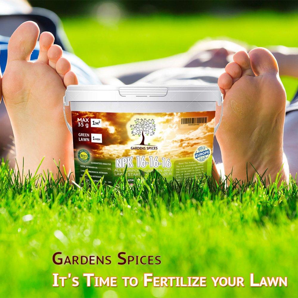 ✅ 12KG Fertilizante para el césped Gardens Spices en un paquete conveniente | El nuevo fertilizante fórmula 2017goda con efecto y la economía de larga ...