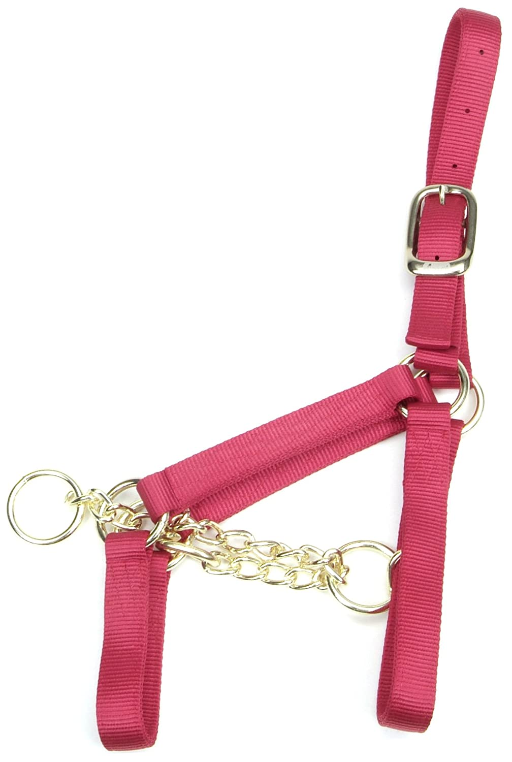 Accent 2.5cm wide Control Halter for Yearlings, 230-360kg, Red