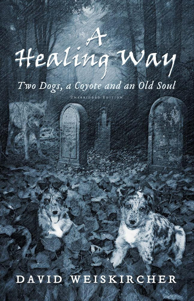 Download A Healing Way: Two Dogs, A Coyote and An Old Soul pdf epub