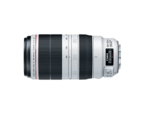 canon's best zoom lenses 100-400mm