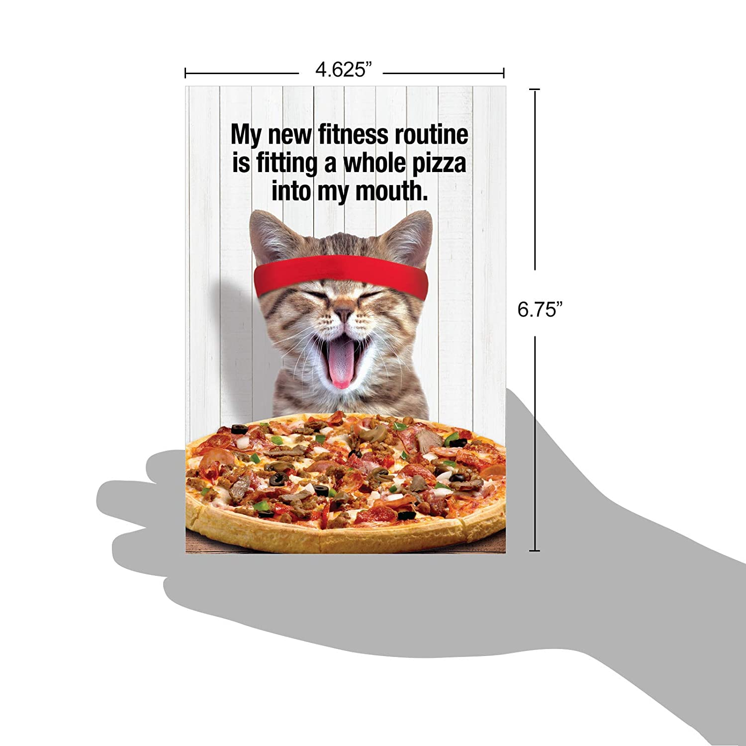 Pizza Fitness Hysterical Birthday Card Showing A Eating Cat With Envelope Office Products Jpg 1500x1500