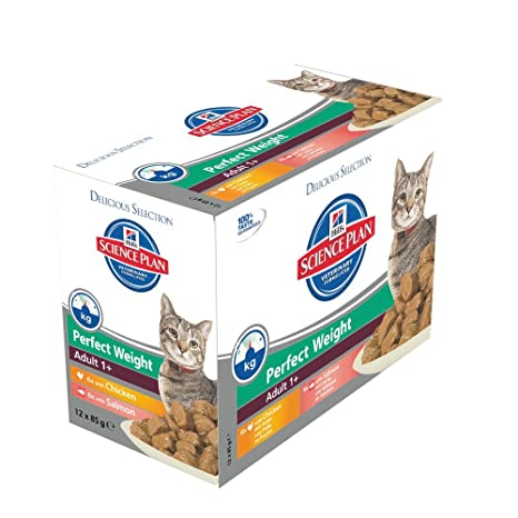 Hills Science Plan C-54100 Perfect Weight - Comida para gatos 1+, 24