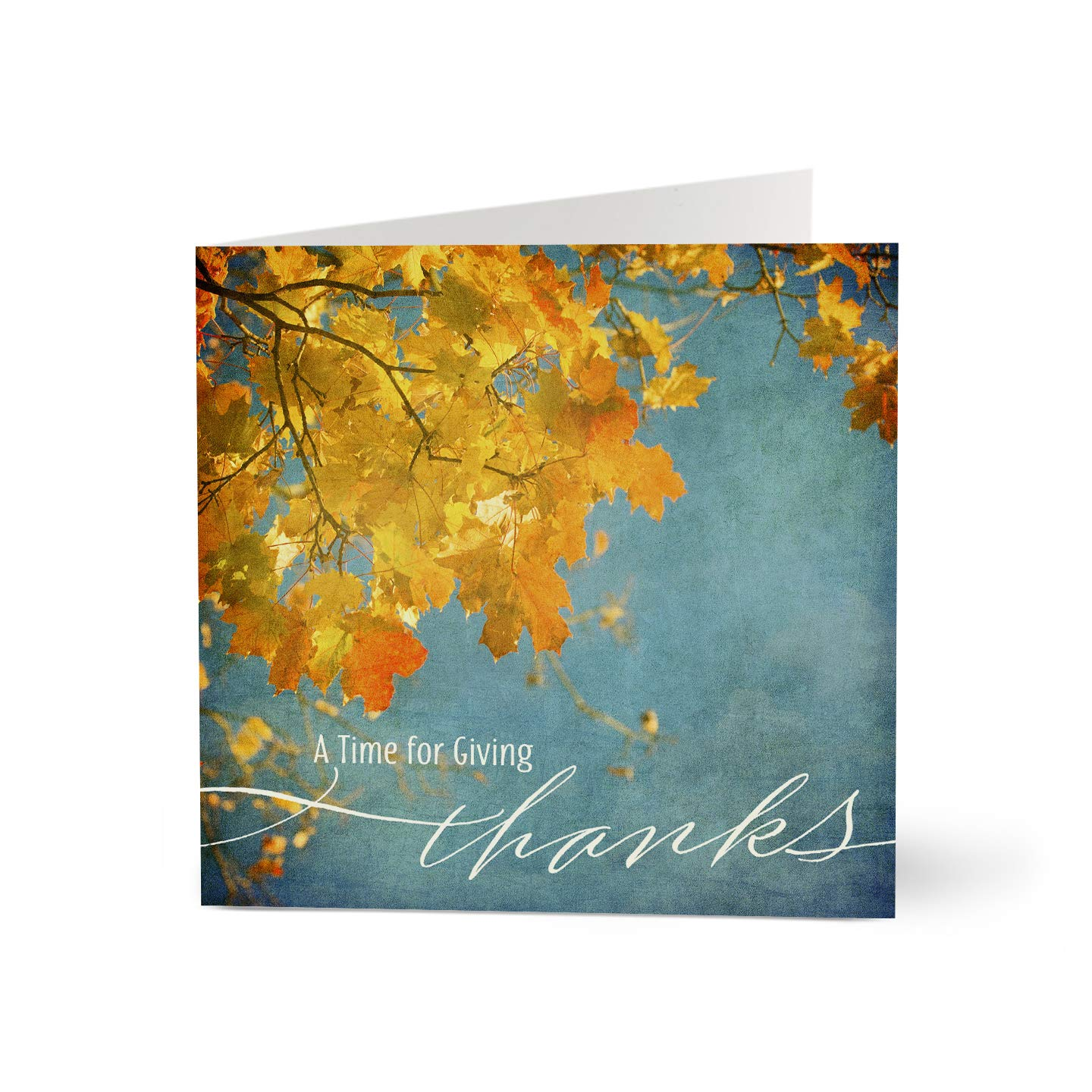 Hallmark Business Thanksgiving Cards for Customers (Thanksgiving Fall Leaves) (Pack of 25 Greeting Cards) by Hallmark Business Connections