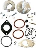 PODOY 796184 Carburetor Rebuild Kit for Briggs & Stratton Nikki Carbs Replaces 698787 790032 Lawn Mower
