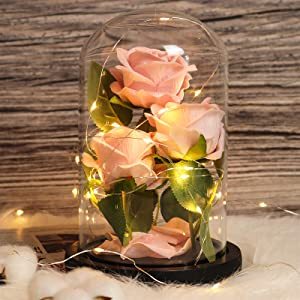 RECUTMS Beauty and The Beast Rose, 3 Pink Roses and Led Light in a Glass Dome for Mother's Day Valentine's Day Home Decor Holiday Birthday Party Wedding Anniversary (3 Pink Roses)