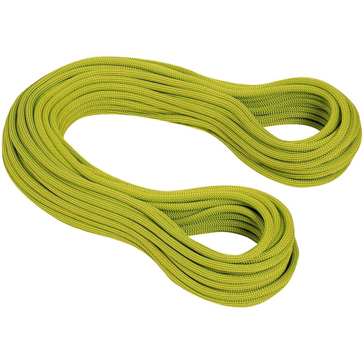 非常に高い品質 ◎17FW マムート(MAMMUT) 9.5 Infinity green Dry 2010-02641 11136 pappel/lime pappel-limegreen クライミング用品 80|Dry B01MU2BG0J Dry pappel/lime green Lg 80 Lg 80|Dry pappel/lime green, フジマルツ醤油:75c0ff5a --- a0267596.xsph.ru