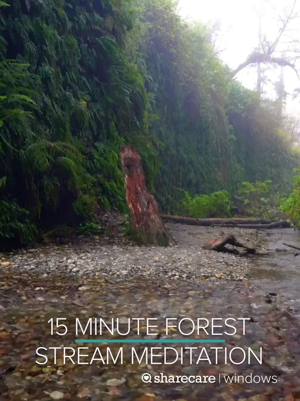 15 Minute Forest Stream Meditation