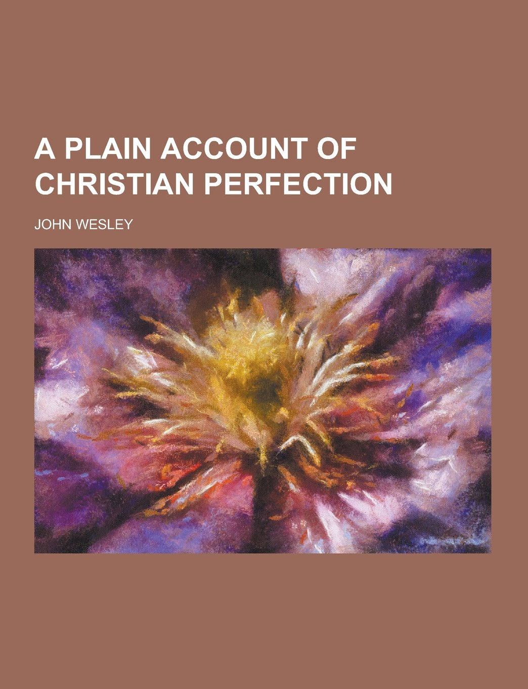 Download A Plain Account of Christian Perfection pdf epub