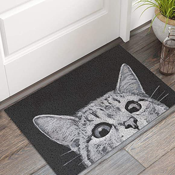 MR FANTASY Cat Front Door Mat Outdoor Mud Absorbent, Welcome Mat Entrance Door Mat Rug Carpet, Outside Patio Inside Entry Way, Anti-Slip Bath Mat Rug Kitchen Mat, Durable Washable, 18×30