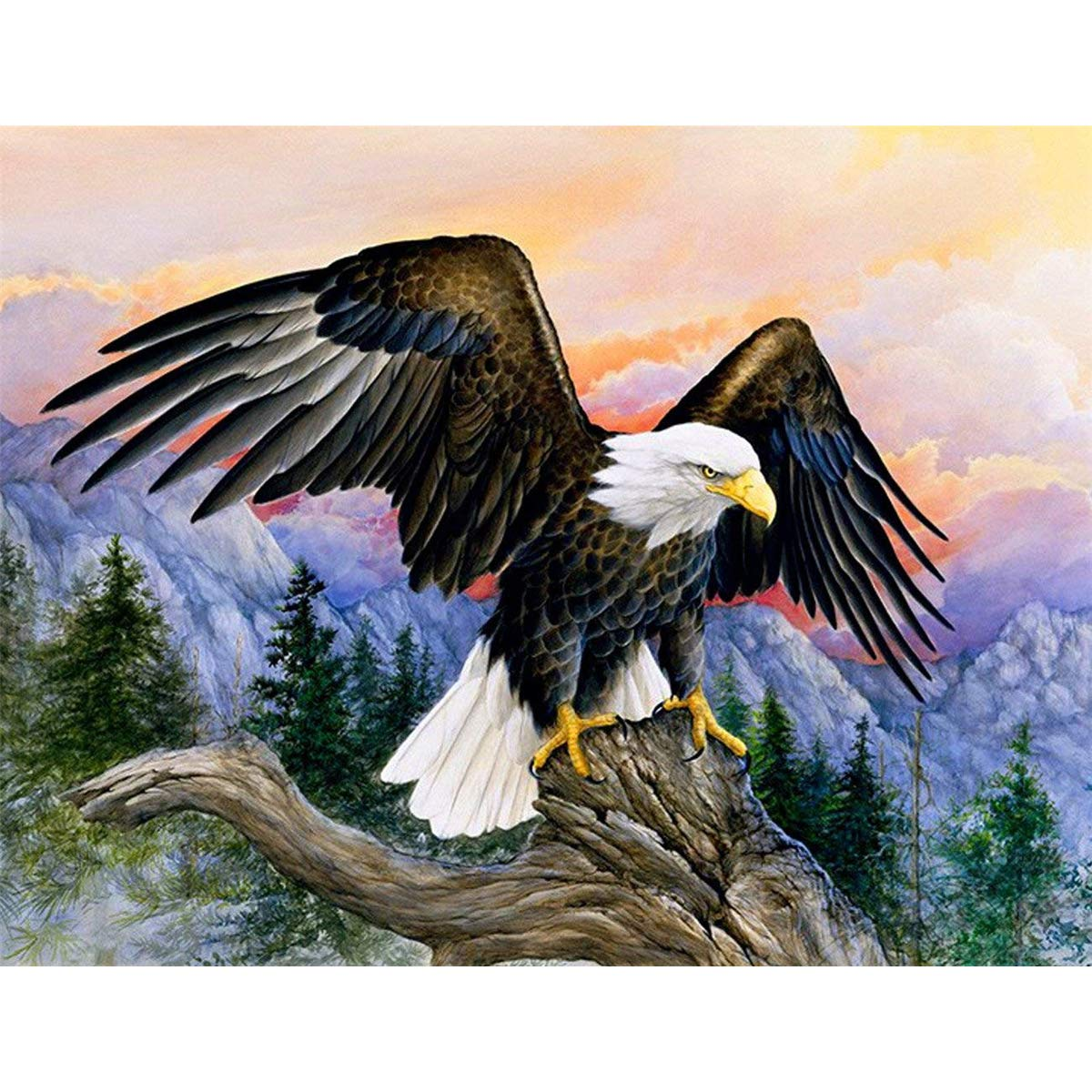 5D Diamond Painting Kit Full Drill DIY Rhinestone Embroidery Cross Stitch Arts Craft for Home Wall Decor Eagle 40x30cm