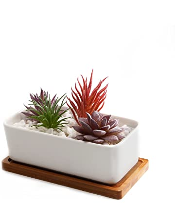 Amazon Co Uk Flower Pots Garden Outdoors