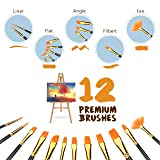 Paint Brushes Artist Brushes 12pcs Acrylic Art