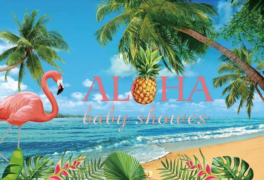 AOSTO Baby Shower Photo Background Melon Watermelon Photo Booth FW-2009 5x3 Baby 1st Birthday Backdrop