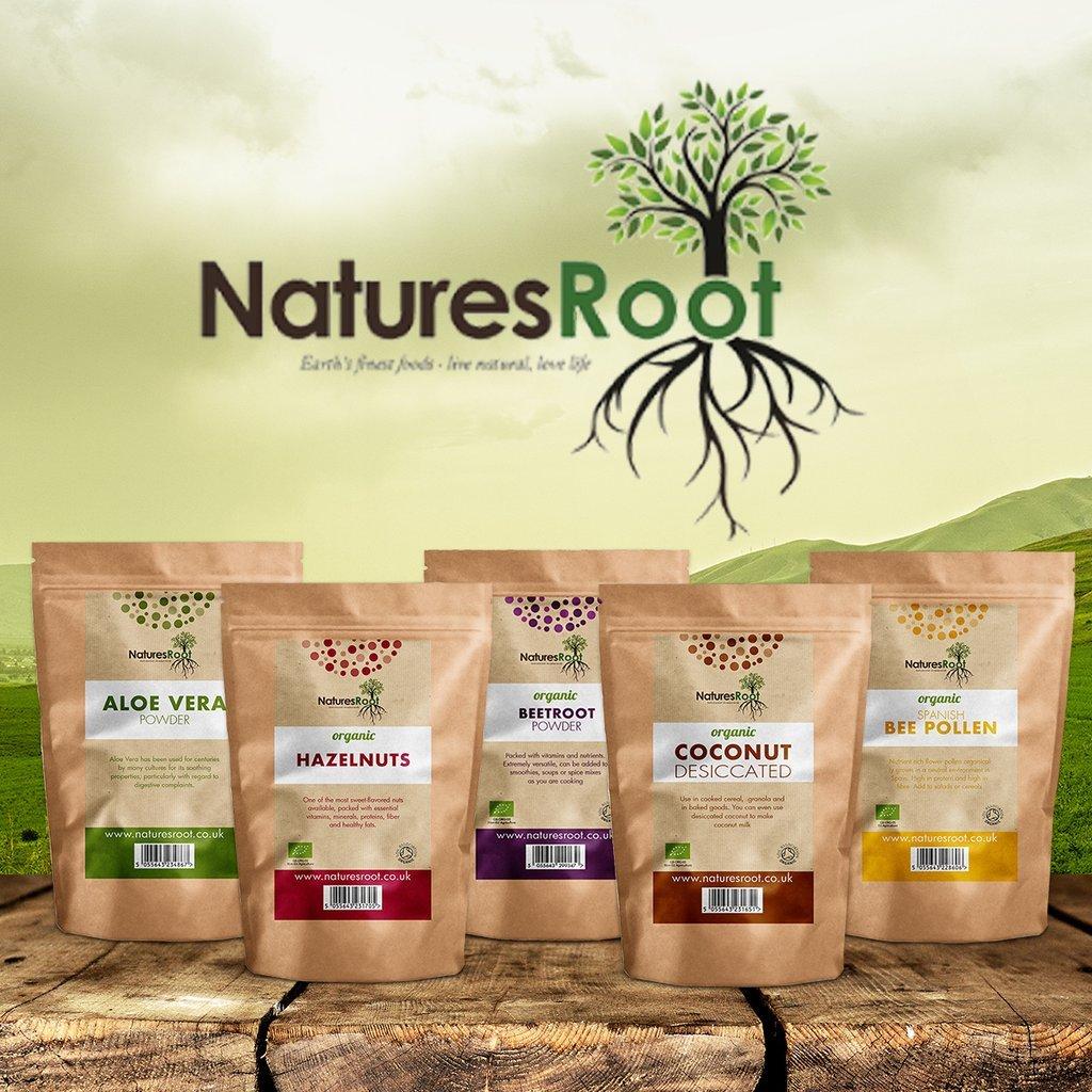 Semi commestibili Grande e Germinabile Natures Root Semi di Moringa Oleifera 250 Semi Senza OGM