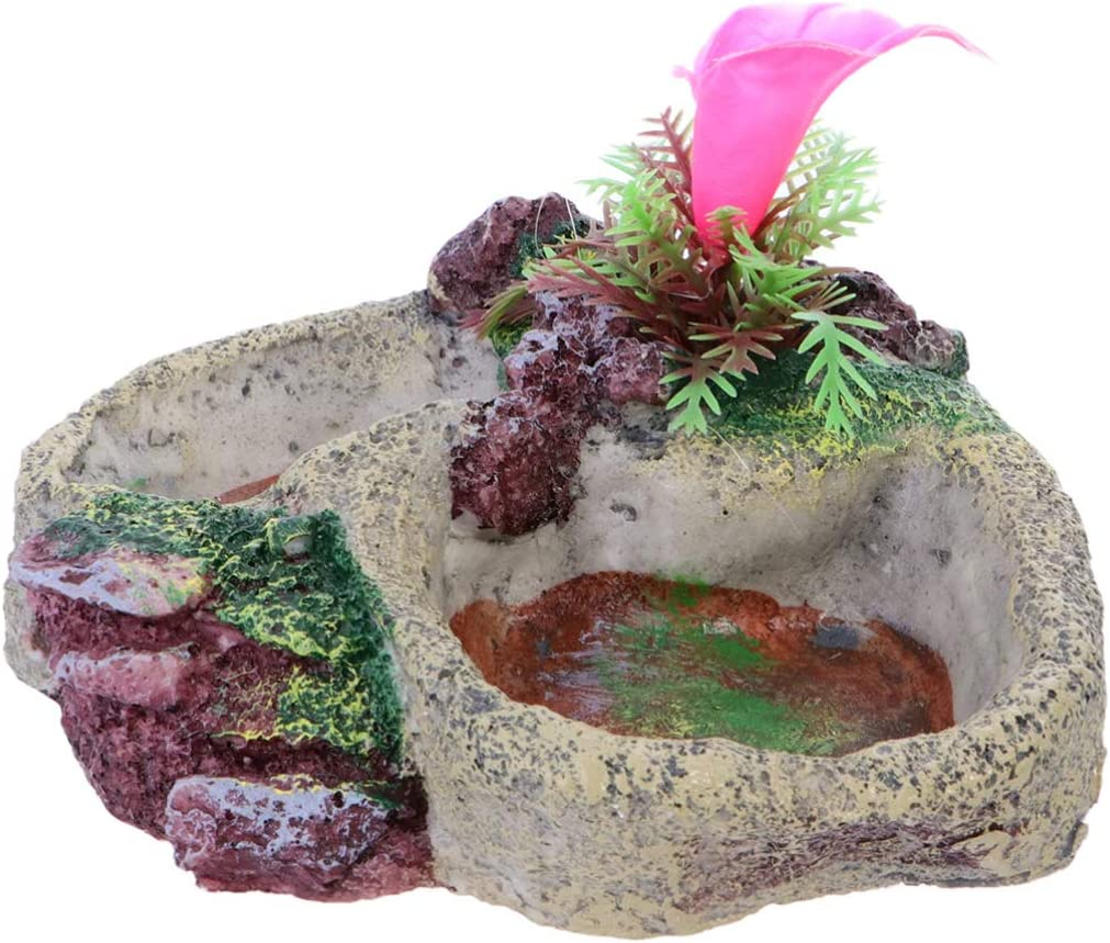 POPETPOP Reptile Water Bowl - Reptile Feeder Food Dish for Tortoise Lizard Frog Leopard Gecko Snake Chameleon Bearded Dragon Accessories SP-008