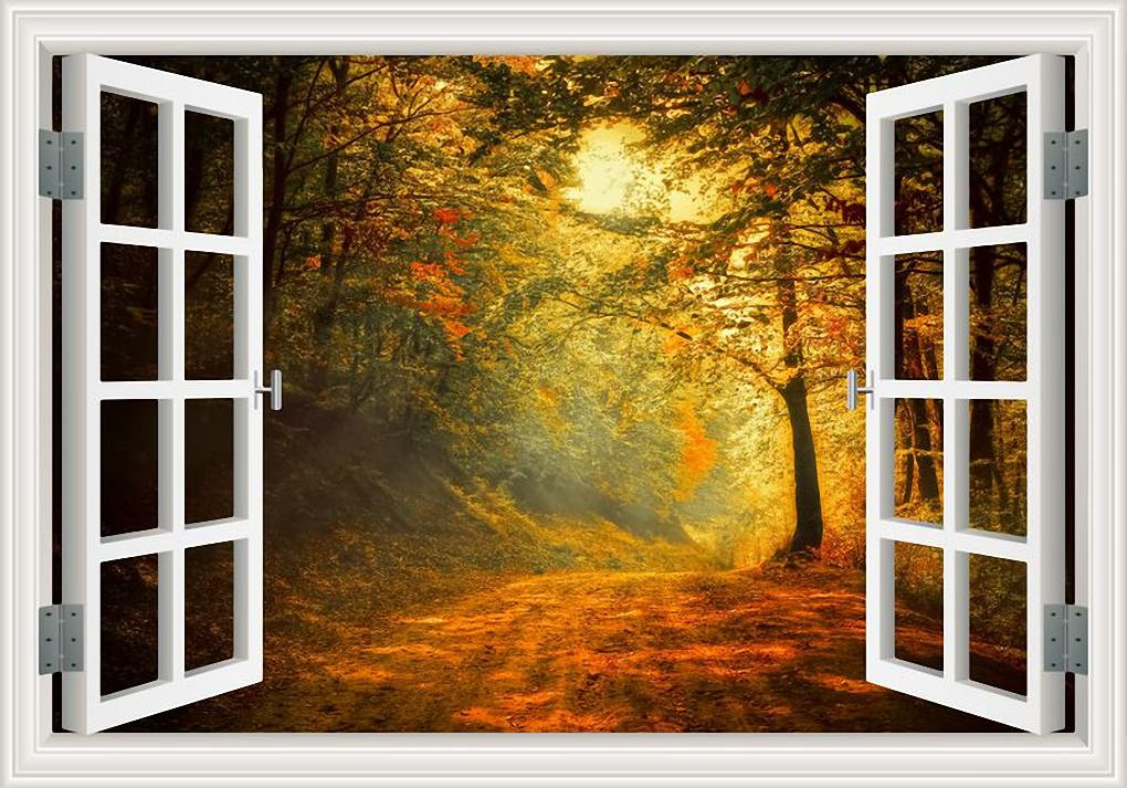 Woods Trees Window Frame wall art sticker decal transfer mural Graphic WSD4