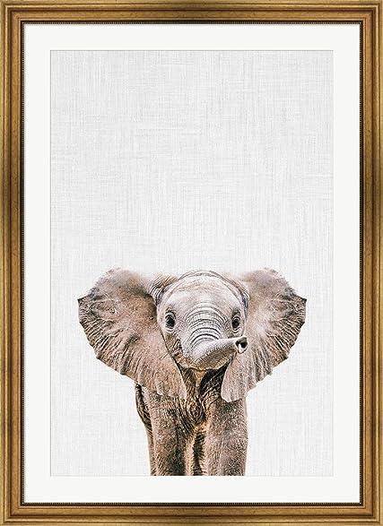 Amazon.com: Baby Elephant by Tai Prints Framed Art Print Wall ...