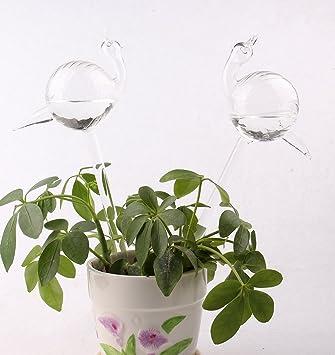 Dulinlan 2 Schnecke Form Pflanzen Wasser Selbst Für Kleine Pflanzen