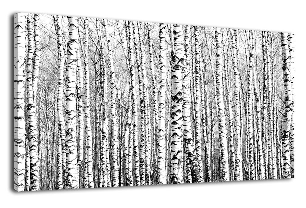 """Canvas Wall Art Birch Grove Picture Nature Winter Scenery Black and White Tree Branch Modern Artwork Long Contemporary Canvas Art for Kitchen Office Wall Decor Bedroom Home Decoration 24"""" x 48"""""""