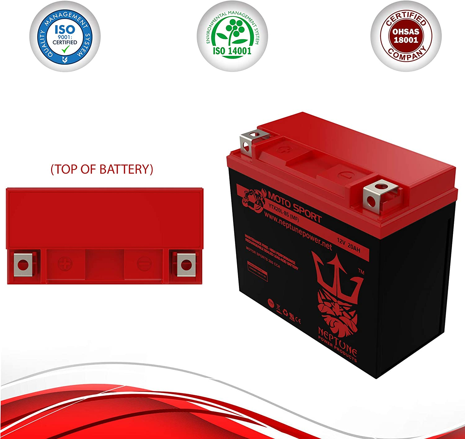 YTX20L-BS brand product by Neptune YTX20L-BS Battery Factory Activated Replacement for Yuasa YTX20L