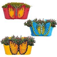 Urban Collection Butterfly, Railing Planter, Flower Pot, Wall Planter, Metal Planter, Balcony, Garden Planter Basket (Multicolour) Set of 3