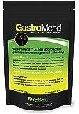 GastroMend--Ulcer Supplement for Horses